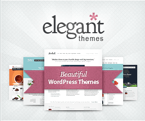 ElegantThemes account
