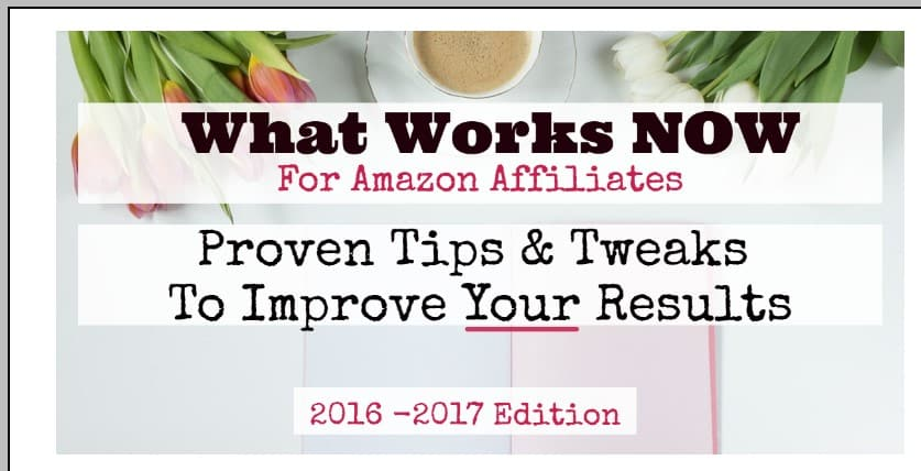 What Works Now for Amazon Affiliates 2.0 by PotPieGirl
