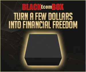Ecom BLACK BOX  DropShipping System makes $252,329/year