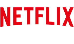 5 Netflix Accounts [LIFETIME]