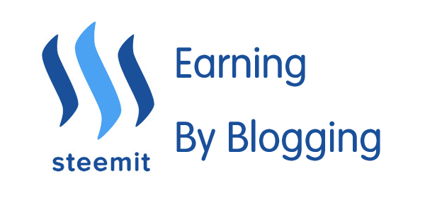 Steemit Bootcamp:Learn to blog and profit from scratch