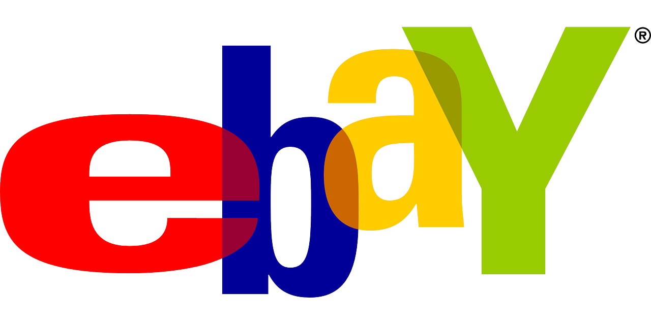 Business PayPal + Ebay + VPS 500-1000 item
