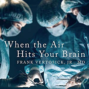 When the Air Hits Your Brain [AudioBook]