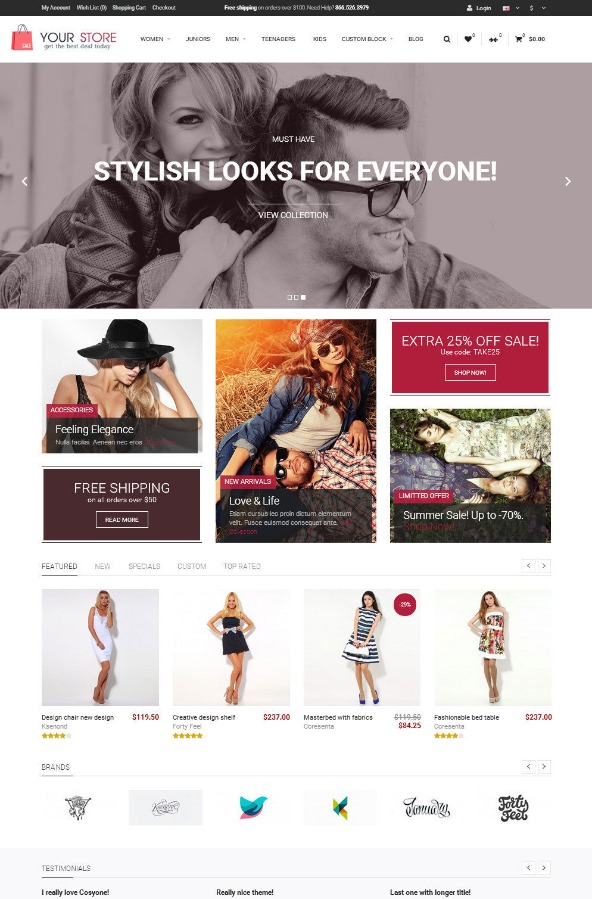 Professional Online Store Ecommerce Website