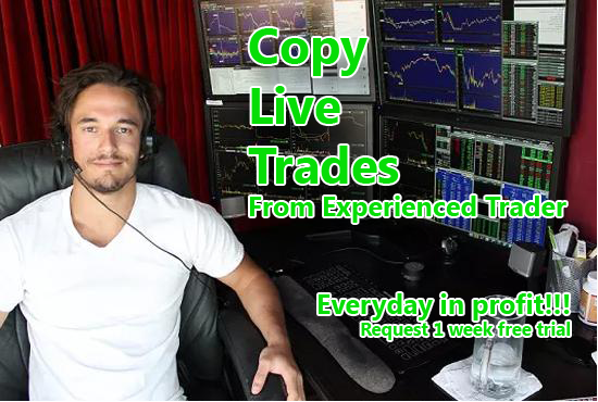Copy Live Trades from Experienced Trader EVERYDAY