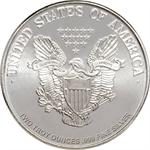 2 Ounce Silver Rounds – Walking Liberty