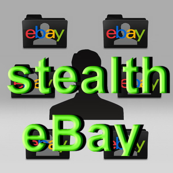 Stealth Ebay seller account type - business ebay