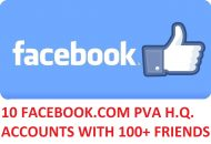 10 FACEBOOK.COM PVA H.Q. ACCOUNTS WITH 100+ FRIENDS