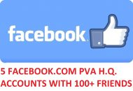 5 FACEBOOK.COM PVA H.Q. ACCOUNTS WITH 100+ FRIENDS