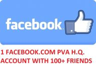 1 FACEBOOK.COM PVA H.Q. ACCOUNT WITH 100+ FRIENDS