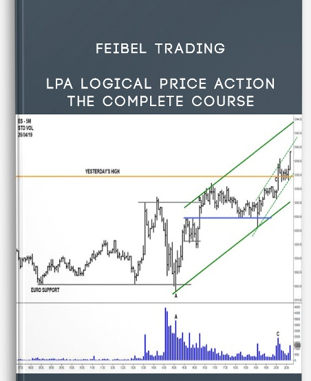 [DOWNLOAD] Feibel Trading - Logical Price Action Course