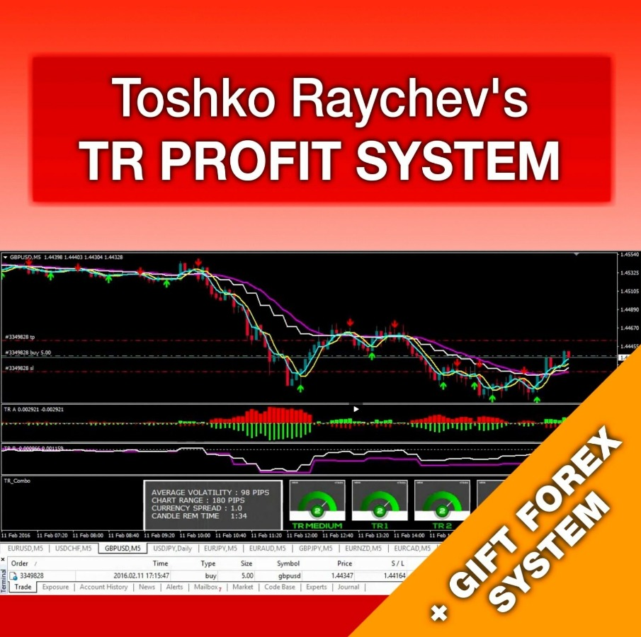 TR Profit System + ITF Assistant (Full Version)