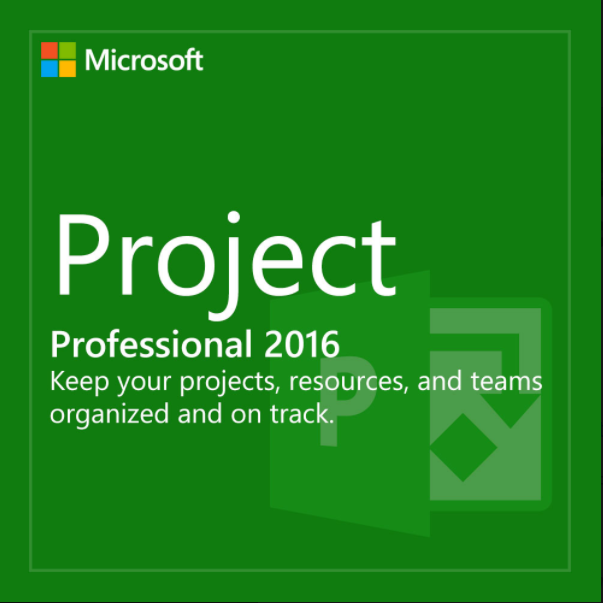 MS Project Professional 2016 License key and Download L