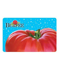 I am Looking for BURPEE Gift Cards with PIN