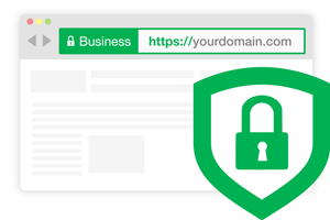 EV SSL +Uk Company Registration + D-U-N-S + Services