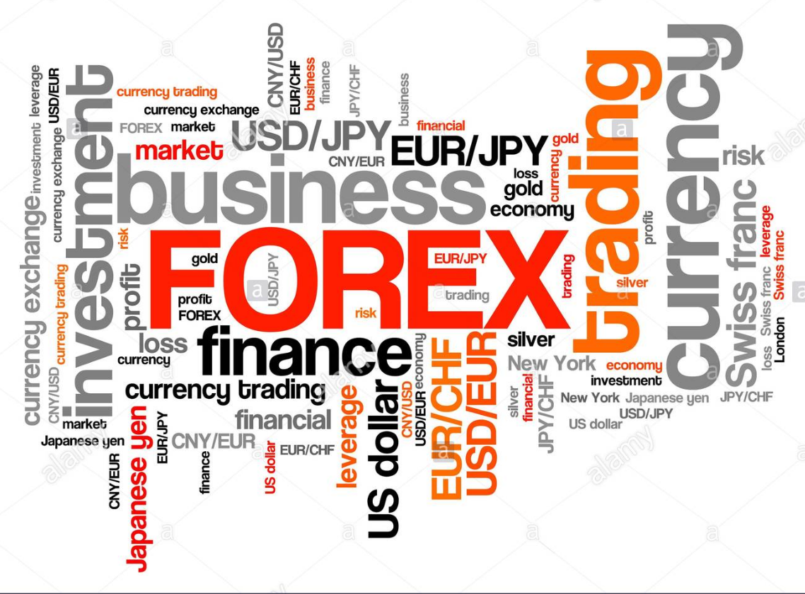 FOREX COURSES CHEAP
