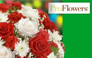 $20 VOUCHER proflowers.com