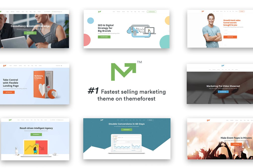 SEO and Marketing Theme Website script