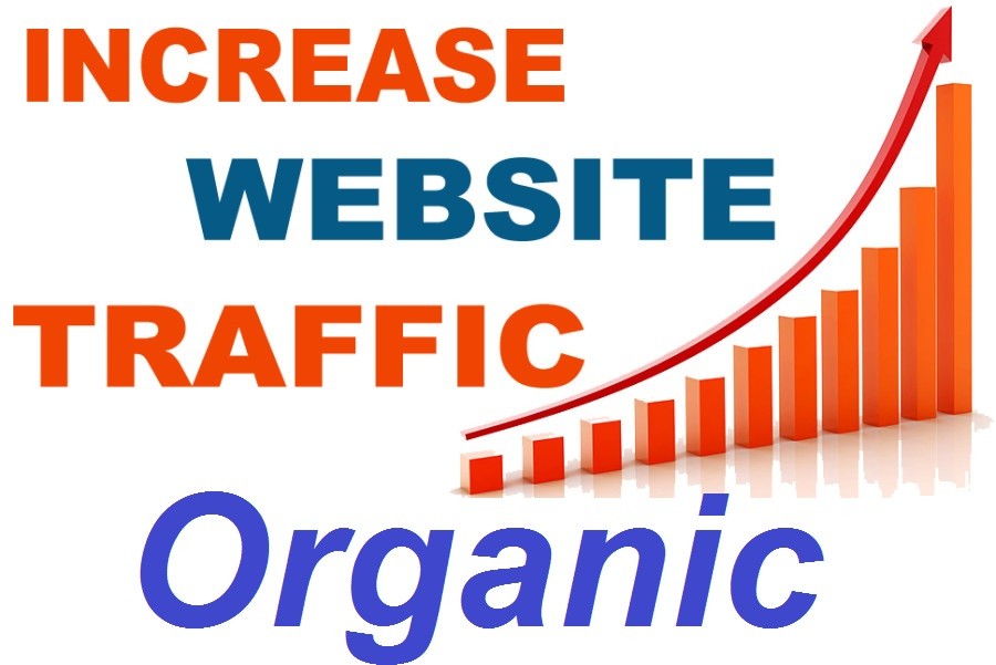 Website Traffic from Google.com | Organic| Worldwide
