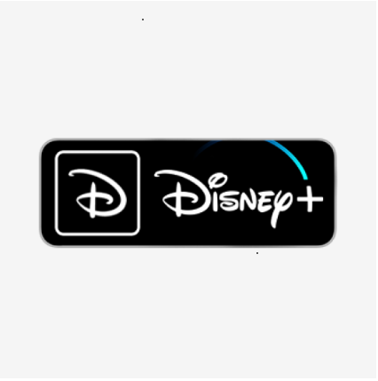 Disney+ Premium Accounts