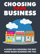 Choosing Your Business (Ebook)