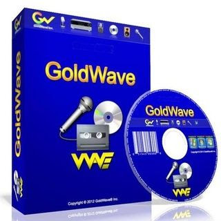GoldWave License 1 PC