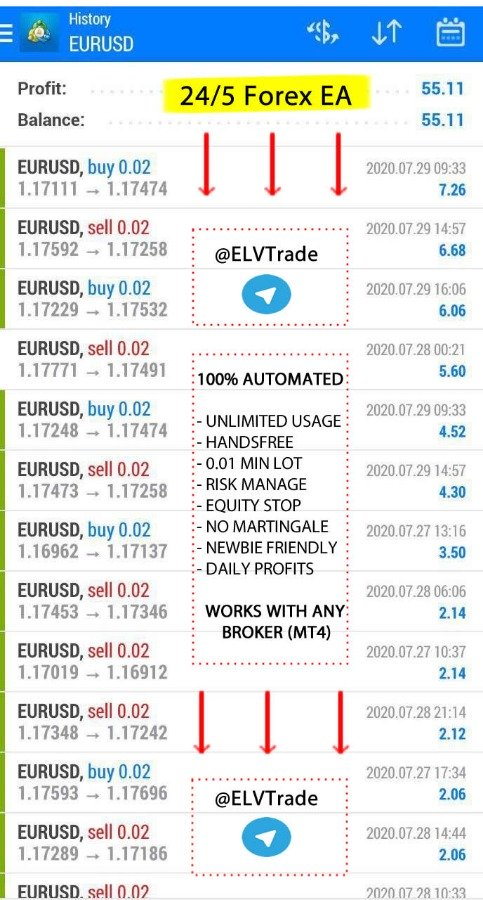 Working Forex Robot