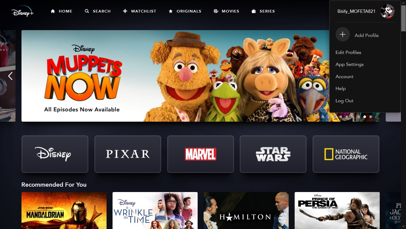 Disney + Plus Premium Account 12 Month Package