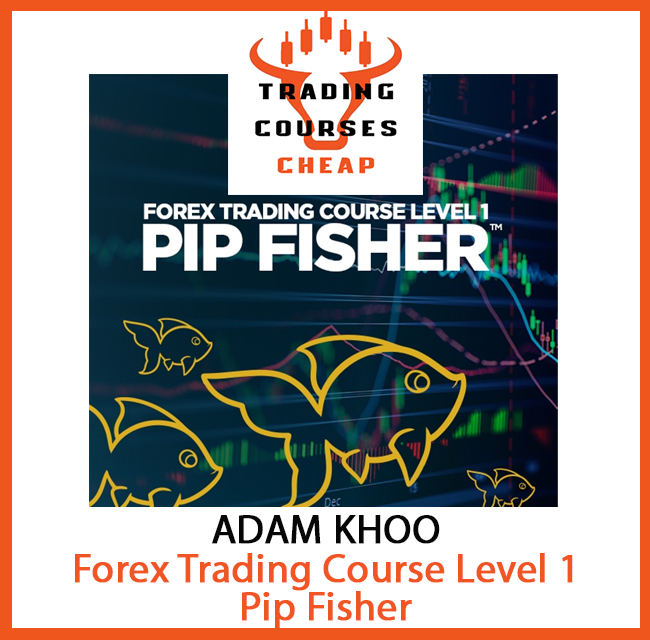 ADAM KHOO - FOREX TRADING COURSE LEVEL 1 - PIP FISHER