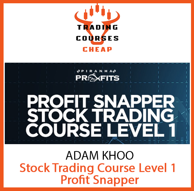 ADAM KHOO - STOCK TRADING COURSE LEVEL 1-PROFIT SNAPPER