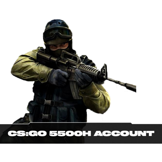 CS:GO 5.500 Hours Playtime Account