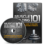 Muscle Building 101 Video Upgrade