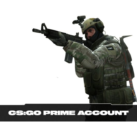 CS:GO Prime + Private Rank 21 Account