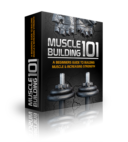 Muscle Building 101 E-Book