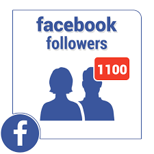 1000 Facebook Fan Page Follower | Only $10 | HQ