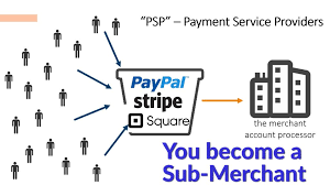 Stripe Shop Account Ready Accept payment 5 Day payout