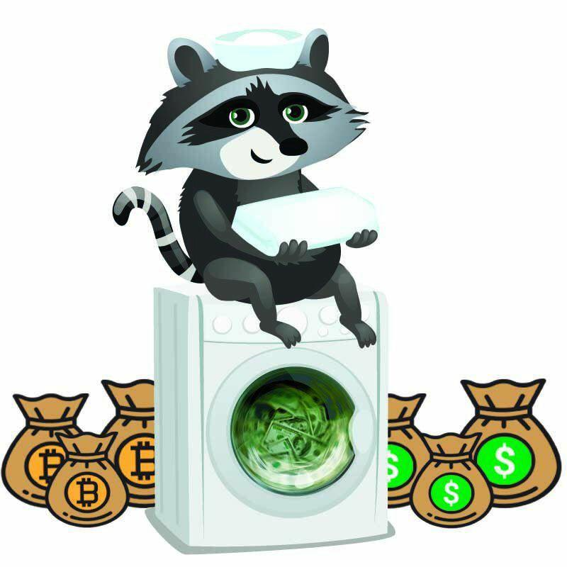 Raccoon wash and you have cash
