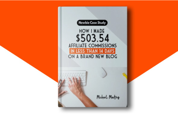 How I Made $503.54 14 Days On A Brand New Blog
