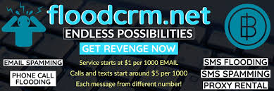 Selling 2x Floodcrm.net invite codes