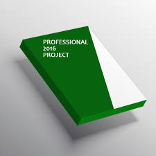 Project Professional 2016 for 1 PC Lifetime Key