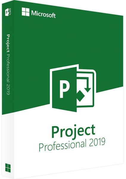 Project 2019 - Project Professional 2019