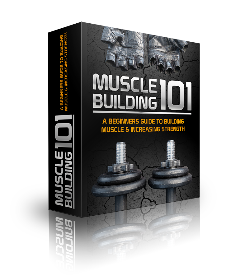 Muscle Building 101 | Instant Delivery Item