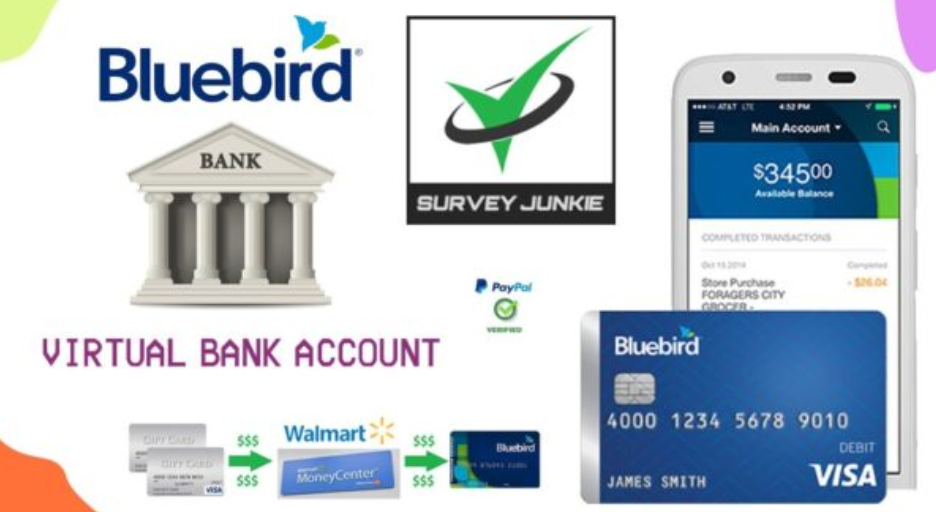 Bluebird Account with VBA and VCC