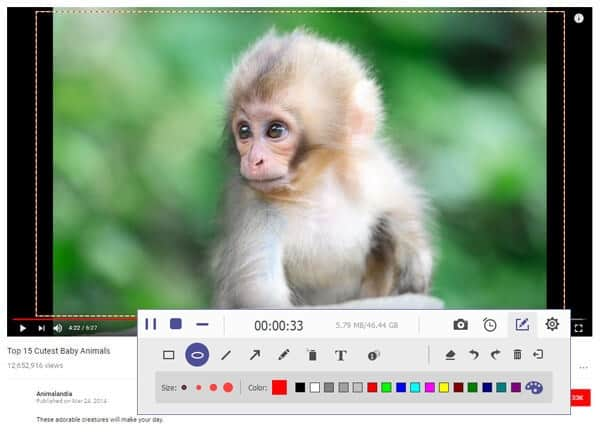AnyMP4 Screen Recorder 1-Year