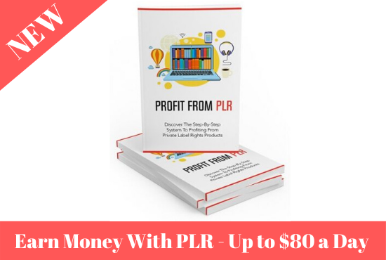 Guide to Profit from PLR (🔥up to 80$ a day🔥)